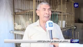 ضعف الإقبال على الدواجن رغم تخفيض أسعارها - (23-8-2019)