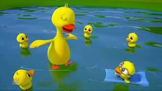 Download Anak bebek lucu - anak bebek takut air??   Lagu anak   YT smartkids channel