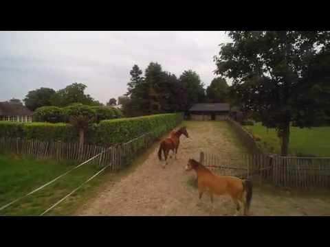 Te Koop woning met stallen