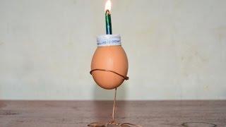 cara membuat lentera cangkang telur