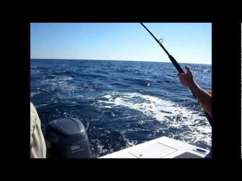 OFFSHORE FISHING, TROLLING THE 40 LINE.wmv