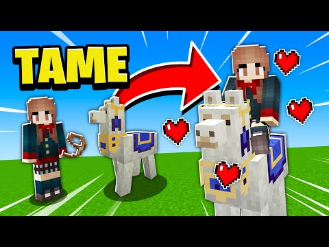 how-to-tame/ride/control/decorate-llamas-in-minecraft-pe!-2017