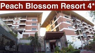 отель Peach Blossom Resort 4* Таиланд Пхукет Ката декабрь 2019 обзор отзыв