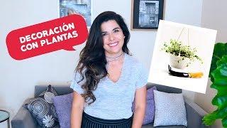 #ConSentidos: Ep. 4 Decoración con Plantas | Inmobiliaria CISSAC