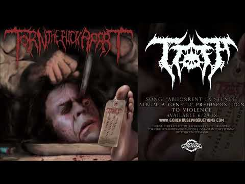 Torn the Fuck Apart - Abhorrent Existence (Official Track)