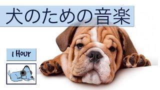 Relax My Dogは、あなたの犬を落ち着かせるのに役立つリラックスした音...