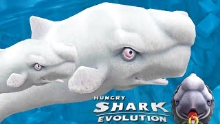 A Little Dickie Baby Shark - MOBY DICK SHARK - Hungry Shark Evolution