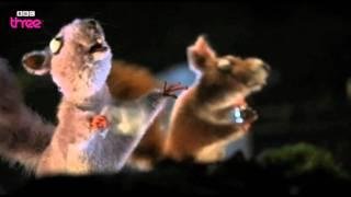 Squirrels On Crack - Mongrels - Series 2, Episode 7 - BBC Three
