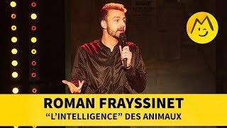 "Roman Frayssinet - ""L'intelligence"" des animaux"