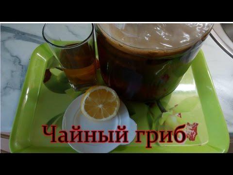Как промыть чайный гриб в домашних условиях видео