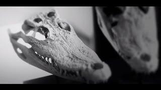 Smolik / Kev Fox - Teaser #1