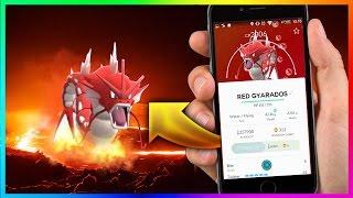 Pokemon Go Shiny Pokemon! Red Gyarados in Pokemon Go ! Magikarp evolve to Red Gyarados!