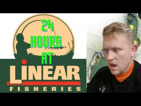 Linear Fishery - 24 Hours On B2