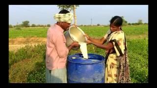 Preparation of Shontipala Kashayam