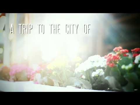 A Trip to the City of Flowers | Holambra | IndiZil Tours | Travelogue | Brazil