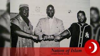 Black Power (Literature Subject)