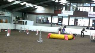 Kayley's 3rd clear round at agility!!