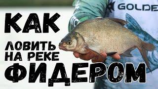 Как ловить фидером много разной рыбы Важные нюансы и хитрости Фидерная рыбалка на реке