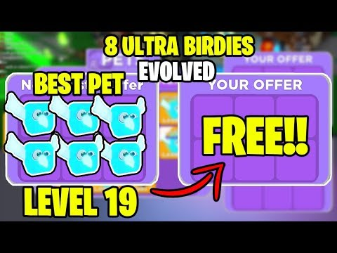 ⚡ I WAS GIVEN 8 OF THE BEST PETS *LVL 19 ULTRA BIRDIE (EVOLVED)* IN NINJA LEGENDS!