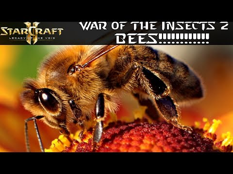 BEES!!!!! - War of the Insects 2 - Starcraft 2 Mod