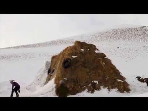 BON VOYAGE Snowboarding Movie 2010