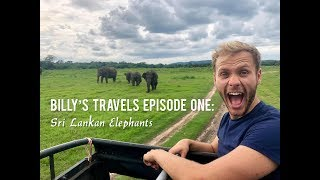 Billy's Travels Episode One: Sri Lankan Elephants