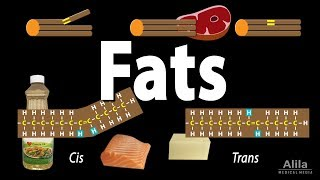 Unsaturated vs Saturated vs Trans Fats, Animation