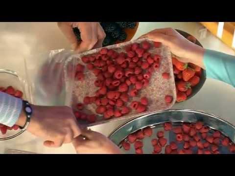 Малина – полезная ягода