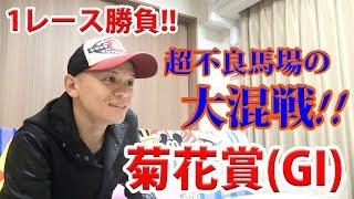 【競馬実践】お家で1レース勝負!! / 菊花賞 /2017.10.22【わさお】
