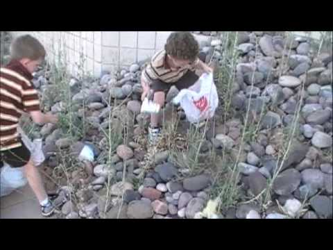 Sonoran Science Academy - Broadway Cleanup