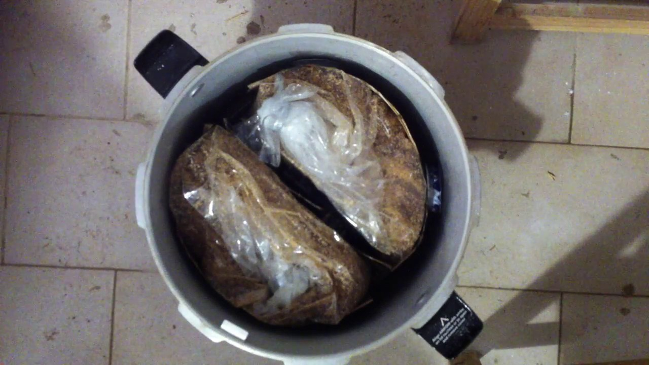 Loading Pressure Cooker to sterilize sawdust substrate for mushroom growing