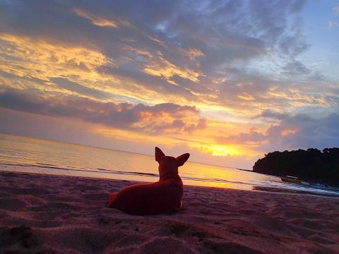 Deux mois à Mayotte avec Albert