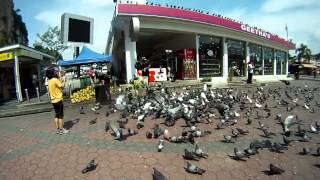 Отчет о поездке в Куала-Лумпур(Этим летом я провел три замечательных для в Куала-Лумпуре. Это была часть моего самостоятельного путешеств..., 2015-08-16T09:06:08.000Z)