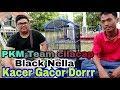 Kacer Gacor Dorrr Dari Pkm Team Cilacap Black Nella  Mp3 - Mp4 Download