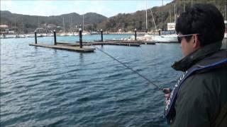 日中カサゴの具体的釣り方! thumbnail