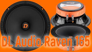 DL Audio Raven 165, громко, чисто, недорого, прослушка и сравнение с конкурентами