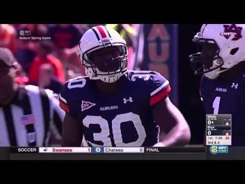 2016 Auburn Spring Game