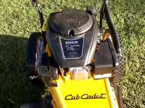 Cub Cadet 22 inch string trimmer - over view
