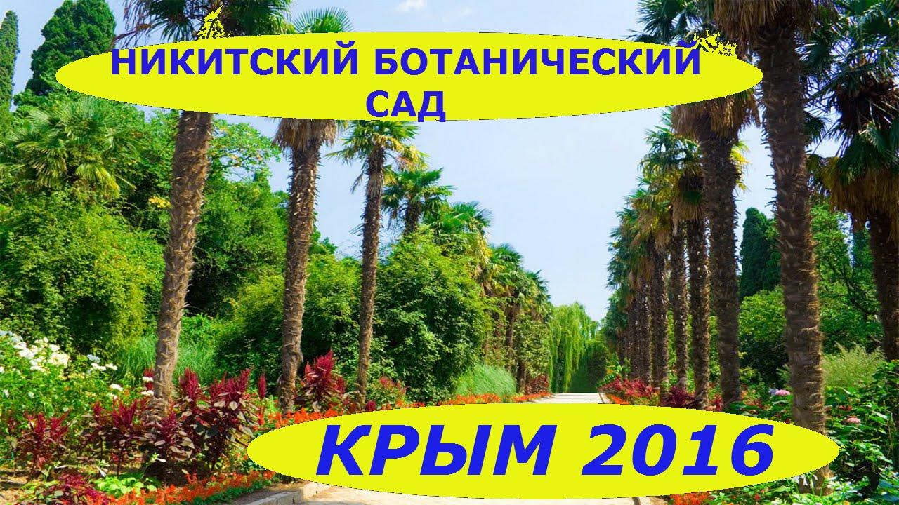 фото ялта ботанический сад