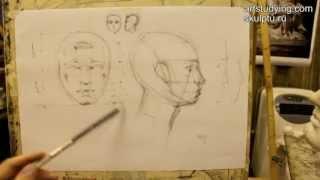 Обучение рисунку. Портрет. 2 серия: о пропорциях головы