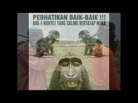 album-foto-keren,-lucu-unik-dan-gokil-viral-di-media-social