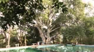LA HUERTA JALISCO -  EL CHORRO - PROFR. RAUL PADILLA CANALES