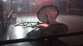 Extreme Robots Cheltenham 2018: Gabriel Vs Beast