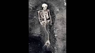 Real Mermaid Found At Red Sea IN 2016