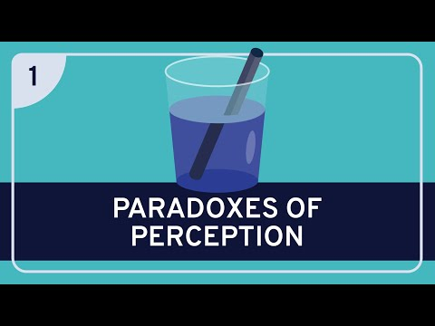 PHILOSOPHY - Epistemology: Paradoxes of Perception #1 (Argument from Illusion) [HD]