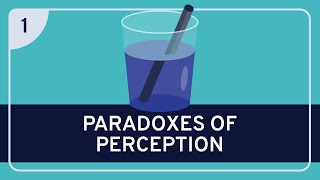 PHILOSOPHY - Metaphysics: Paradoxes of Perception [HD]
