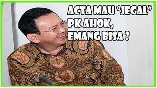 ACTA Mau J364l PK Ahok, Emang Bisa?