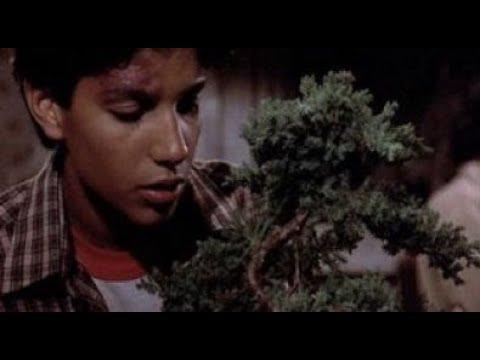 The Karate Kid Ost 09 Bonsai Tree Youtube