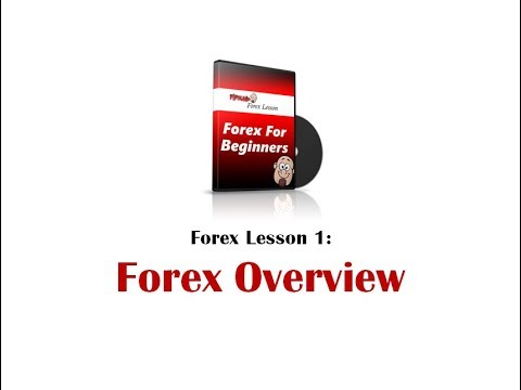Forex lessons for beginners free