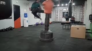 Martial arts(3)